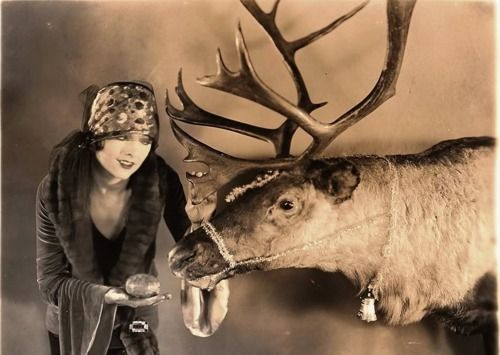 Myrna Loy, before gaining Thin Man fame, feeds one of Santa's reindeer, 1920's.