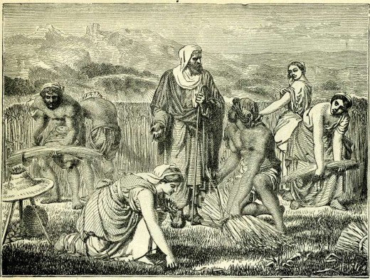 Ruth gleans wheat in the fields of Boaz, her kinsman and future husband. In the Torah, charity is a mitzvah incumbent upon the individual. In ancient Israel, the third-year tithe – reserved for Levites, sojourners, widows and orphans, was administered by the Cohanim, not civil or military authorities. The Torah's gleaning laws required the poor to gather leftover crops themselves (Deut. 24:19), which allowed them to maintain their dignity and work ethic. The Torah understood that the purpose of charity was not to create a permanent underclass. It never gives the state the authority to redistribute wealth or dole out charity since the state does not create wealth. The state only seizes the wealth of others. The socialist founders of the modern state of Israel were great Zionists, but also delusional utopians who abandoned the wisdom of the Torah in favor of (Jew-hating) Marxists. Go figure.