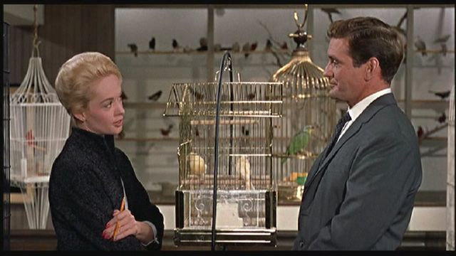 Tippi Hedrin and Rod Taylor in The Birds.
