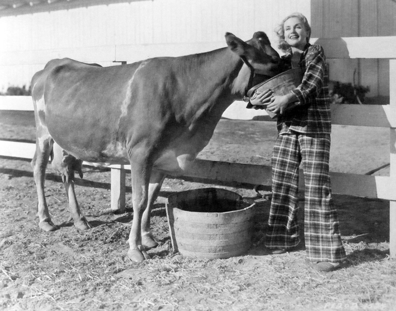 The year is 1937 and the great Carole Lombard feeds her cow. Here's what's odd about this pic: Is Lombard wearing pajamas? Or is that some tartan pantsuit that is a loony precursor to Hillary's tragic butch look?