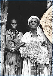 Ethiopian Jewish women with qita, the unleavened bread they bake for Passover.