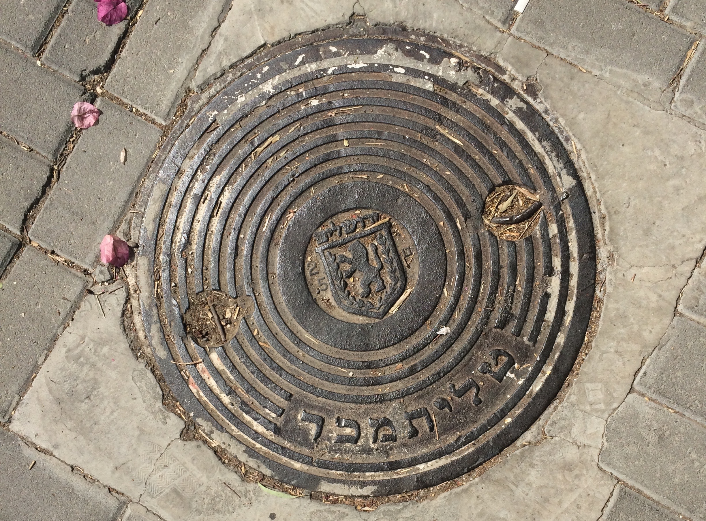 A Jerusalem manhole cover. Notice the etching of the lion, symbol of the city that was established as the capital of the Jewish nation under King David's reign.