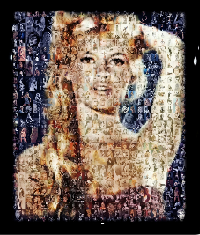 Jerome Lucani, Brigitte Bardot, 2012 Digital C-prints on Piano Finished Black Lacquered Hand-carved Wood Panel Glazed in Resin. The photo is a collage of BB photos.