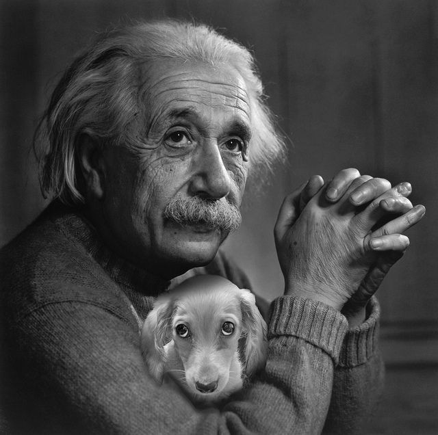 Einstein with his dog