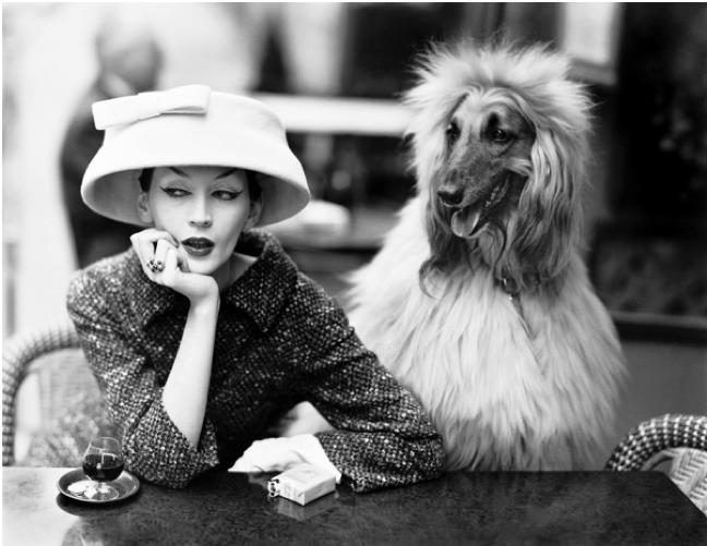 Richard Avedon, Christobal Balenciaga, Dovima in cloche – Cafe de Deux Magots, Paris 1955