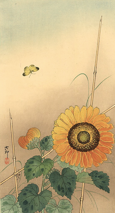 Ohara Koson Small Butterfly and Sunflower c.1900