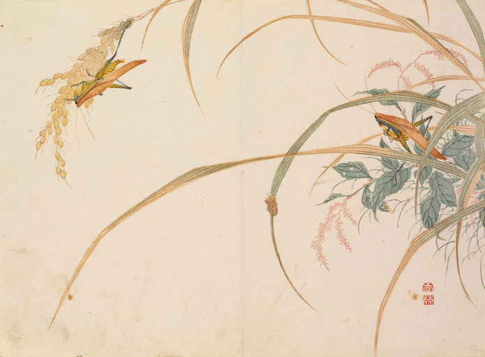 Mori-Shunkei Grasshopper and Rice Plan c.1820