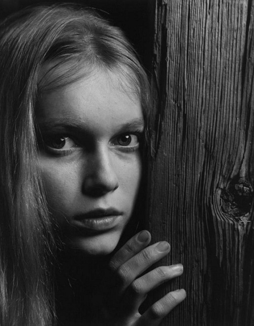 "Mia Farrow, 1964. Photo by Philippe Halsman ""I want a big career, a big man, and a big life. You have to think big - that's the only way to get it..I just couldn't stand being anonymous. I don't want to be just 'one of the Farrows,' third from the top and fifth from the bottom."" -Mia Farrow, 1965"